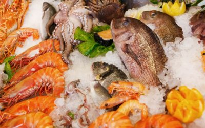 Five of the Rarest Seafood Treats You Simply Must Try at Least Once in Your Life